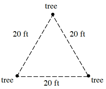 Triangle with dashed sides, each vertex labeled, tree, & each side labeled, 20 ft.