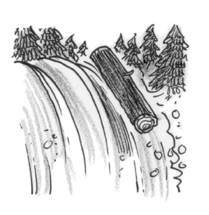 A log going over a waterfall.