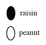 Rasin/peanut image