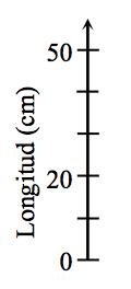 Un eje vertical rotulado Longitud, en centímetros, tiene 6 marcas rotuladas, de abajo hacia arriba, como sigue: primera, 0; tercera, 20; sexta, 50.