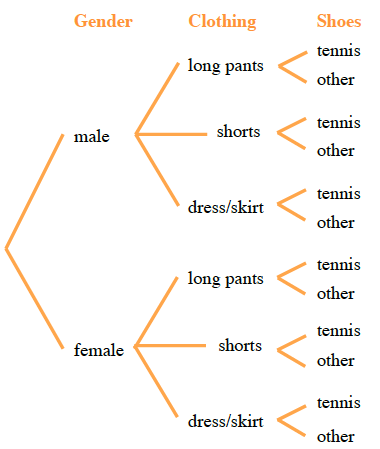 Two branches labeled Gender: Male and Female. The Male branch splits into three branches of Clothing: long pants, shorts, dress or skirt. The Female branch splits into the same 3 branches. All of these branches split into two branches of shoes: tennis or other.
