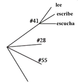 Diagrama de árbol con 4 ramas. La rama superior, rotulada número 41, tiene 3 ramas rotuladas: lee, escribe, escucha. La segunda rama principal está rotulada número 28. La tercera rama principal está rotulada número 55.