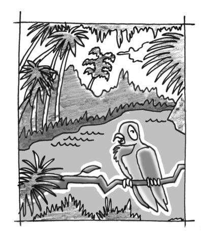 Parrot in rainforest.