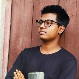 Alok Kumar 🦊