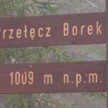 Marek Borecki
