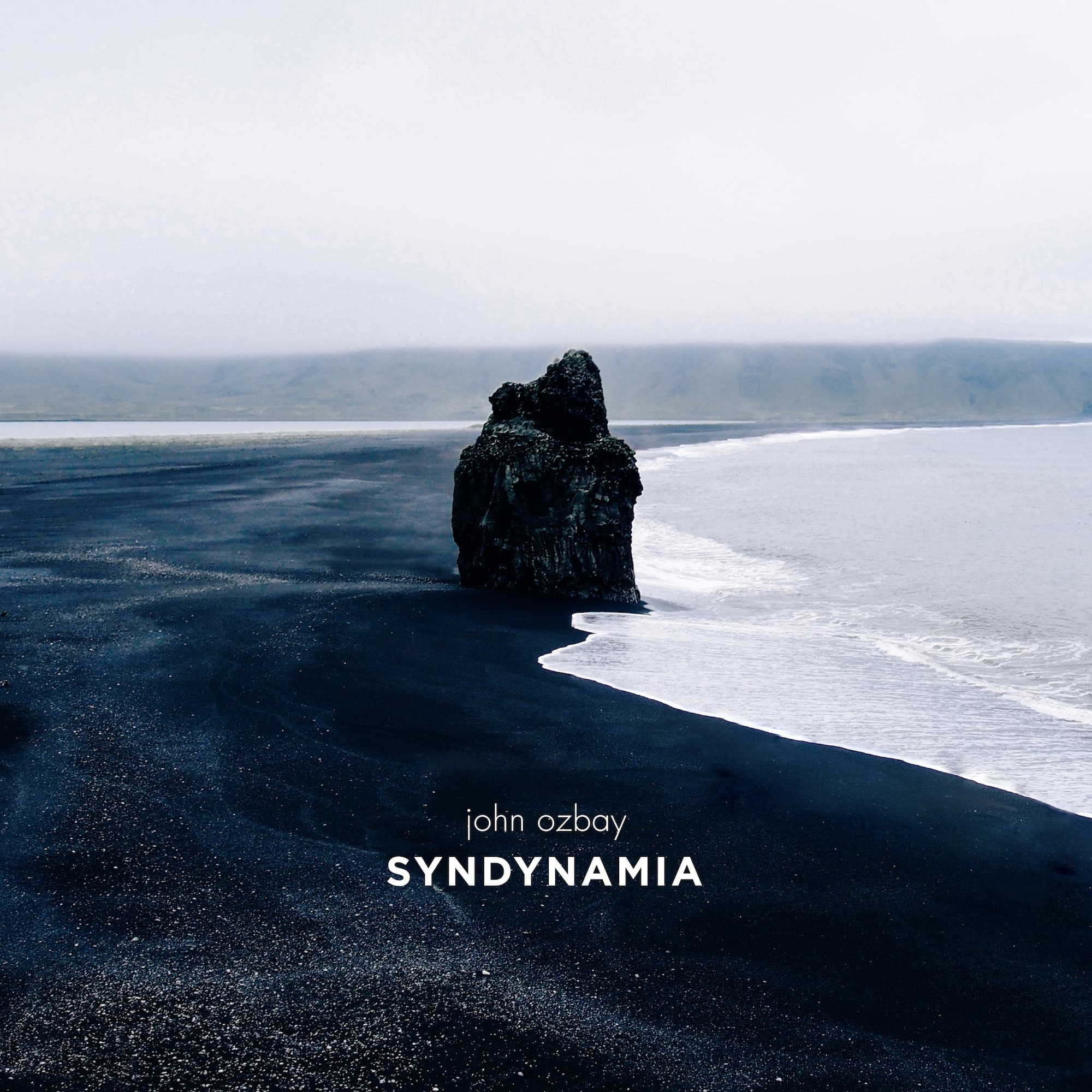 Syndynamia Artwork