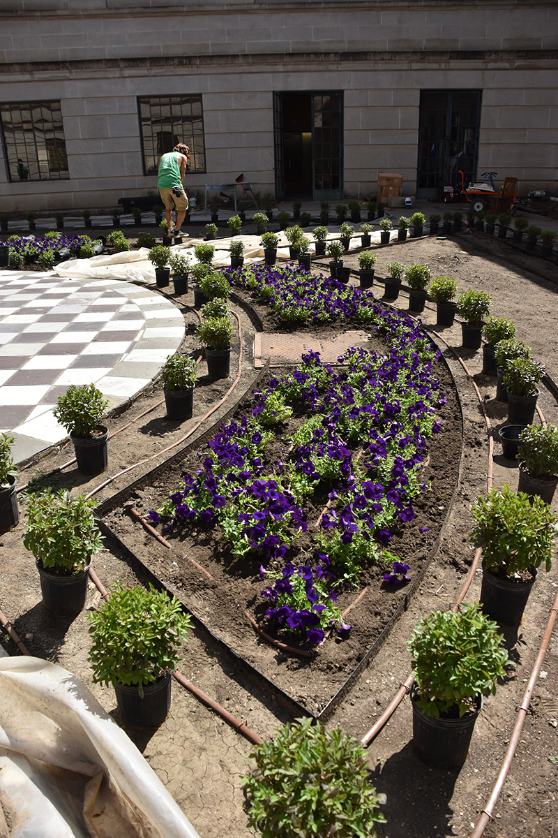 Petunias are planted in another quarter section of the courtyard