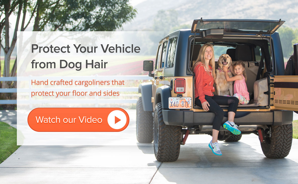 Dog in a 2014 Jeep Wrangler with cargoliner