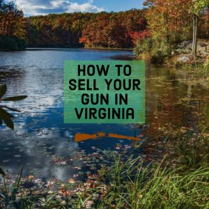 how to sell my gun in virginia