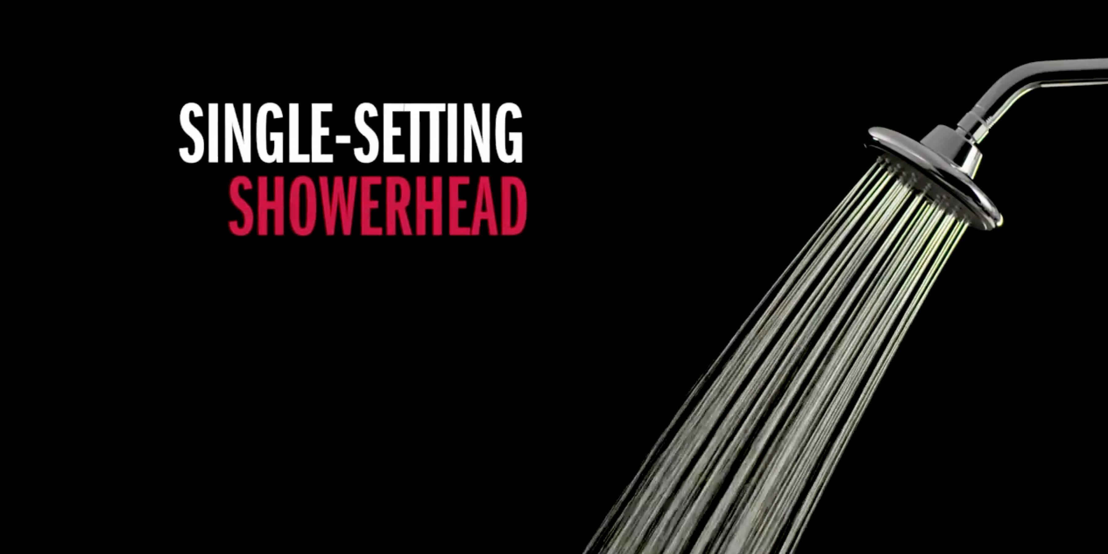 Lahara® Single-Setting Showerhead