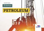 Standfor Projects - Petroleum - Level 3