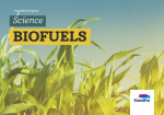 Standfor Projects - Biofuels - Level 3