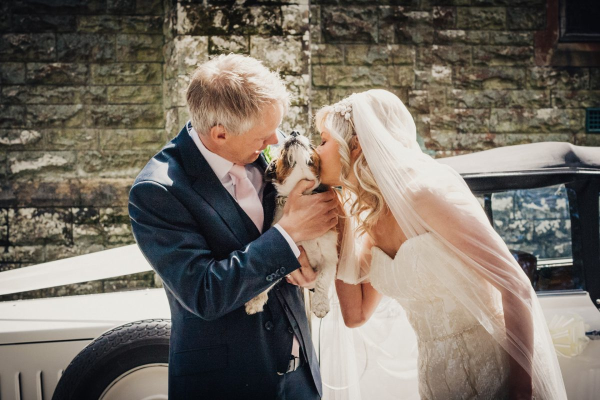 Wedding Photography_The Gower_bride, groom and dog