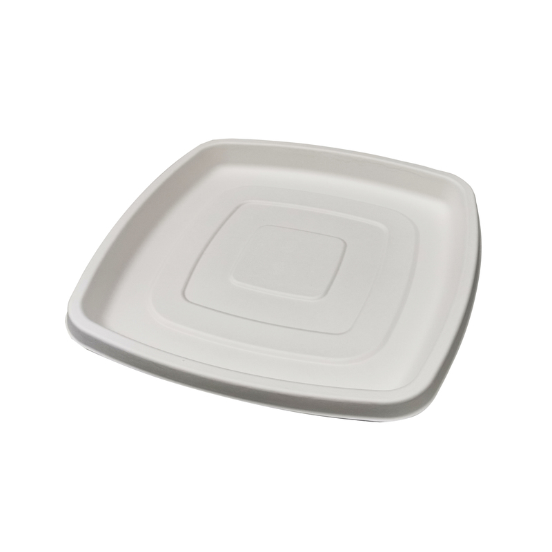 Square Sugarcane Dish - 11.75 in.
