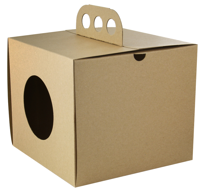 Brass Knuckles Take Out Lunch Box 6.9 x 6.9 x 5.9 in.