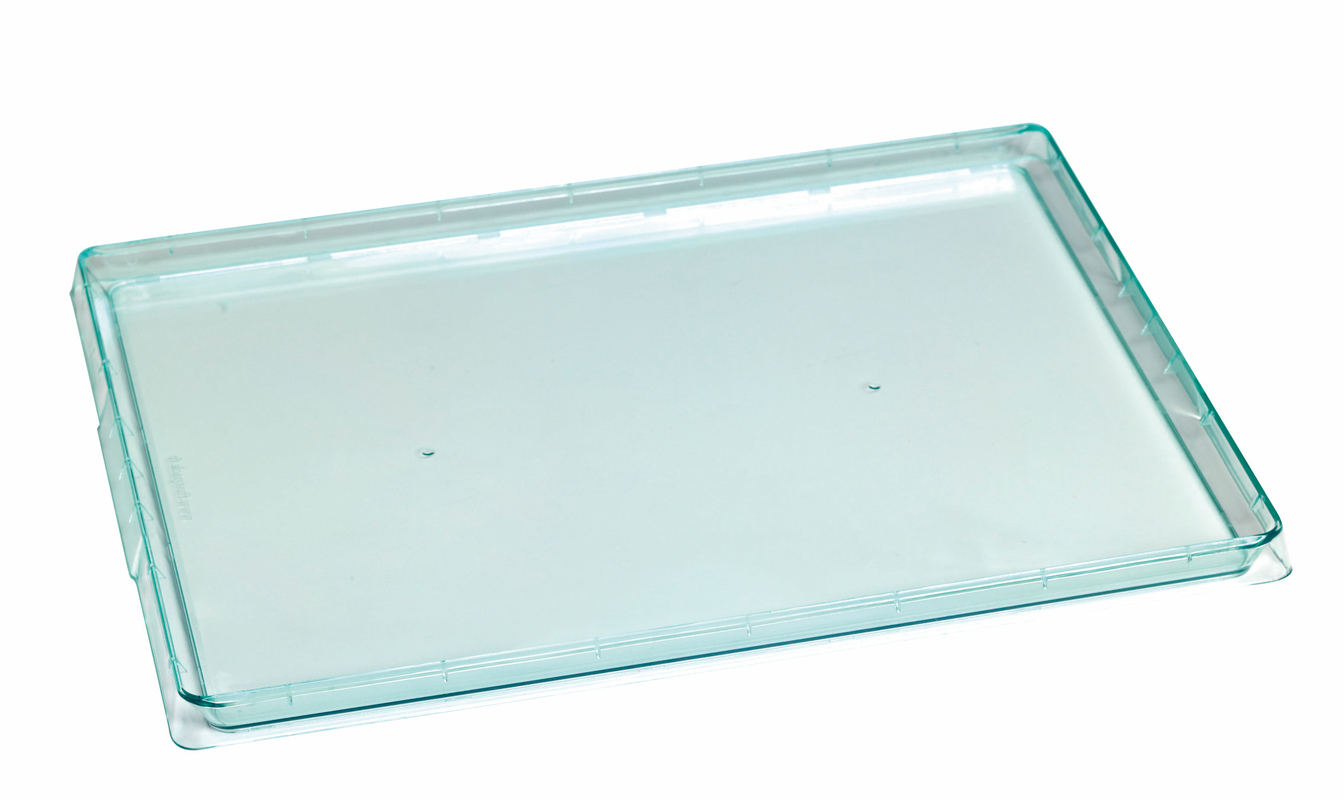 Transparent Green Klarity Tray - 15 x 10.7 in.