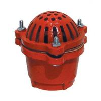 Foot Valves and Strainers