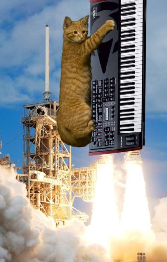 Cat with Access Virus synthesizer being launched into space
