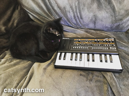 Luna and Roland JP-08