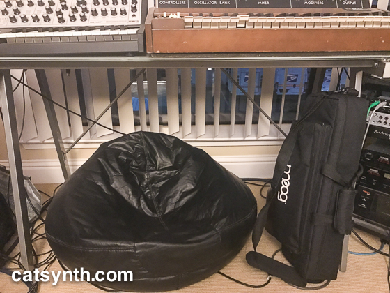 The empty beanbag chair, underneath the Moog Synthesizers