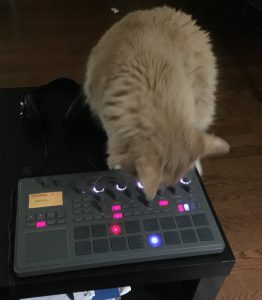 Leo making beats on electribe