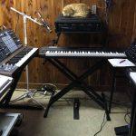CatSynth Pic: Cat in the Studio, Arturia MatrixBrute, and More