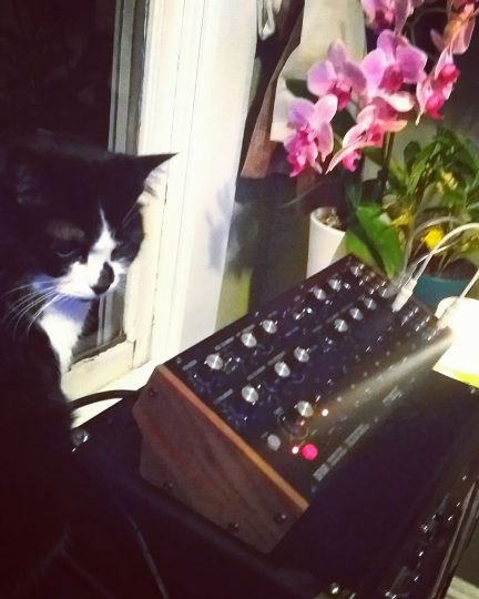 Carmen and Moog DFAM