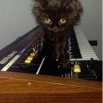 CatSynth Pic: Syd and Roland  Juno 60