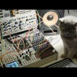 CatSynth Video: Polyend Seq & Poly and Eurorack modular