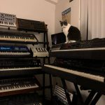 CatSynth Pic: Queen of the Synth Hill