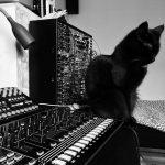 CatSynth Pic: Jazz in the Studio