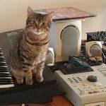 CatSynth Pic: Ripley, Akai MPC, and Ensoniq SQ 1