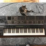 CatSynth Pic: Roland JD-800