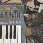 CatSynth Pic: Roland SH-101