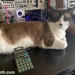 CatSynth Pics: Big Merp, Pocket Operator, Monotron