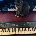 CatSynth Pic: Tablebeast TB-MT14 (Circuit-Bent Casio MT-140) 2008 Black