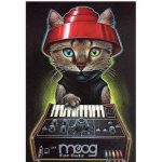 CatSynth Pic: Space Kitty, Moog for Cats