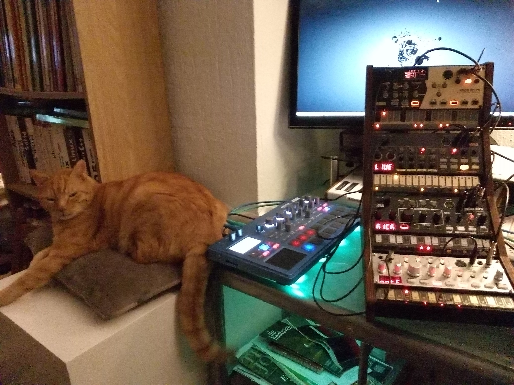 CatSynth Pic: Tower of Volca