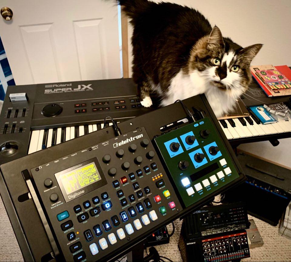 CatSynth Pic: Dahlia, Elektron Digitone, Roland Super JX, and more