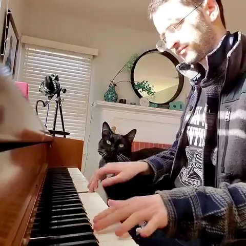 CatSynth Video: Jazz Piano and Cat