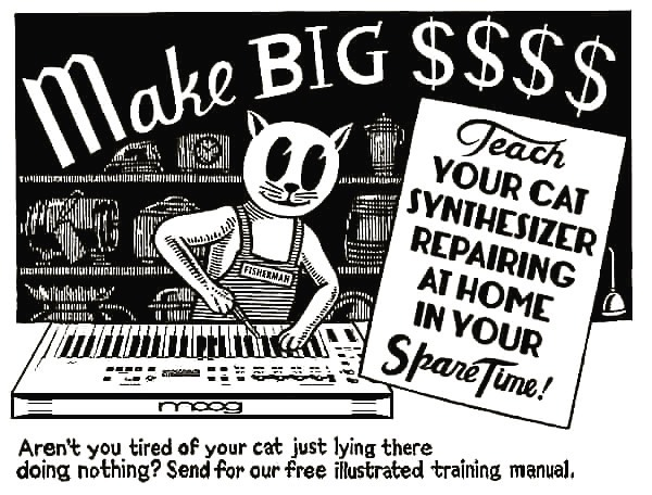 CatSynth Pic: Teach Your Cat Synthesizer Repairing at Home (Reprise)