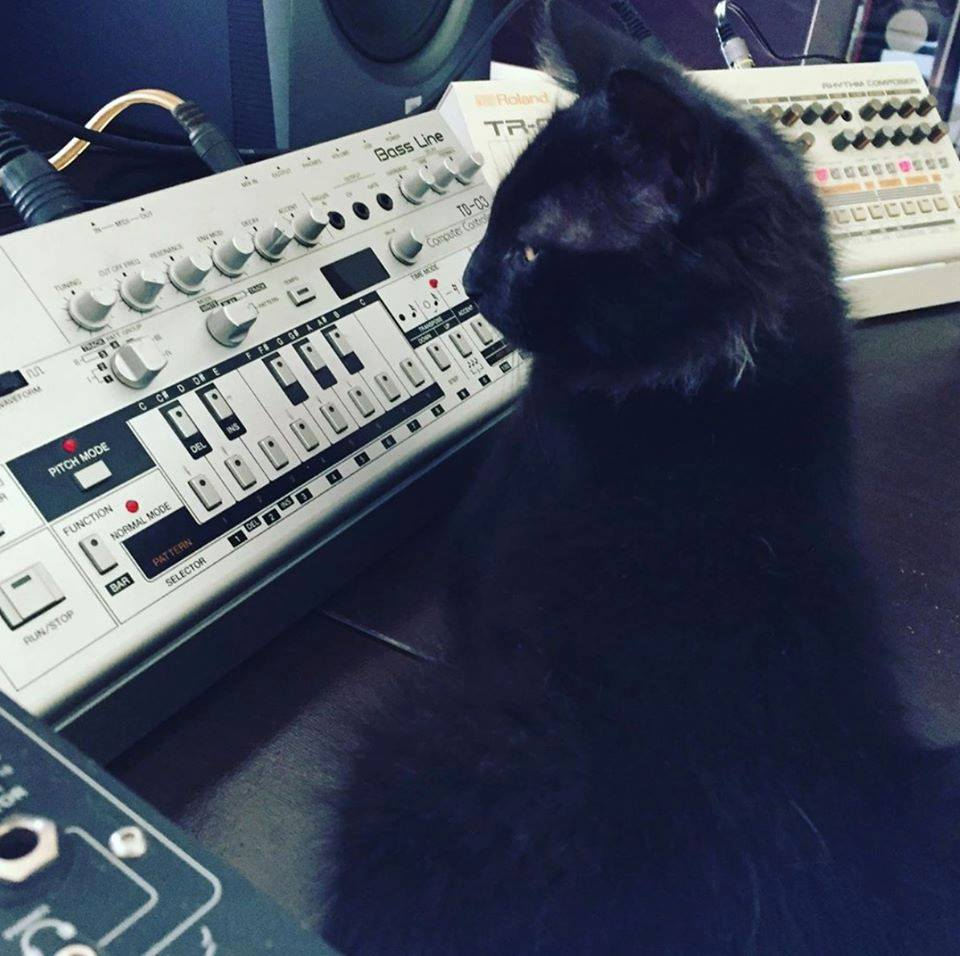 CatSynth Pic: Roland TB-03 and TR-09