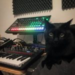 CatSynth Pic: Roland TR-8 and Korg Monologue