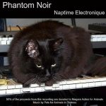 CatSynth Pic: Phantom and Yamaha DX21