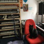 Black Cat in a Synth Studio (Roland, Yamaha, more)