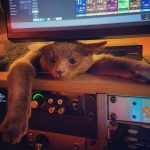 CatSynth Pic: Compression (Universal Audio)