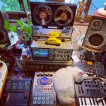 CatSynth Video: Meditation with Korg, Arturia, and White Cat