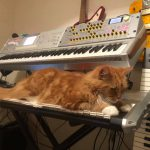 CatSynth Pic: Korg M3, Nord Modular, and more