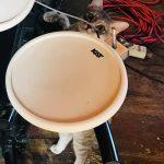 Drum KAT Cat
