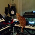 CatSynth pic: Waldorf, Roland, More